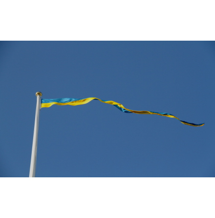 Swedish Pennant