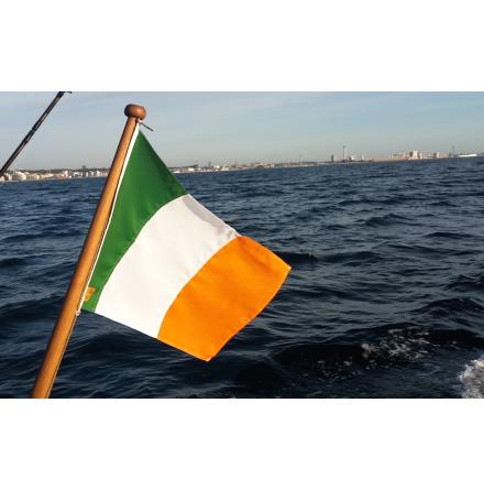 Irland Flag / Bratach na hÉireann
